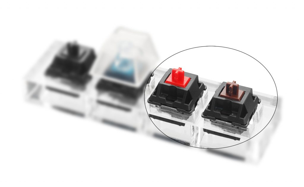 red vs brown switches